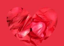 Sello del amor Fotografía de archivo