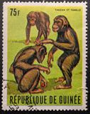 Sello 1969 La Rep?blica de Guinea Chimpanc? Tarzan imagen de archivo libre de regalías