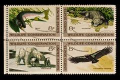 Sello postal de la conservación de la fauna Fotografía de archivo