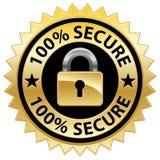 Sello seguro del Web site del 100% Imágenes de archivo libres de regalías