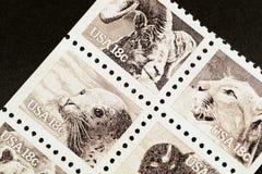 Sellos de la fauna de la sepia Fotos de archivo libres de regalías