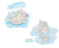 Sellos y madre y niños del oso polar Imagen de archivo libre de regalías