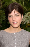 Selma Blair Stock Images