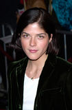 Selma Blair Stock Photography