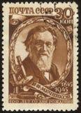 Selo de porte postal fotografia de stock