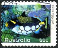 Selo de Triggerfish Australian Postage do palhaço imagens de stock