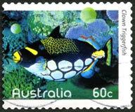 Selo de Triggerfish Australian Postage do palhaço imagem de stock