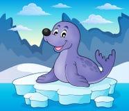 Selo feliz no tema 2 do iceberg Foto de Stock Royalty Free