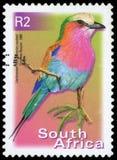 Selo postal - África do Sul Fotografia de Stock Royalty Free
