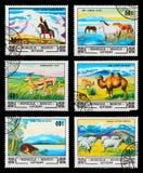 Selo postal Fotografia de Stock