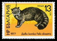 Selo postal da série do ` dos animais selvagens do ` de Bulgária, 1977 fotos de stock