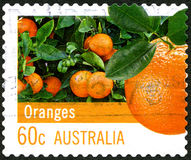 Selo postal do australiano das laranjas Imagem de Stock Royalty Free