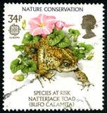 Selo postal do Reino Unido da conservação da natureza Fotos de Stock Royalty Free