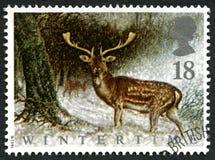 Selo postal do Reino Unido do inverno Fotos de Stock