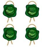 Selo verde da cera com corda dourada ilustração royalty free