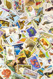 selos Foto de Stock