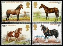 Selos de porte postal britânicos do cavalo Foto de Stock Royalty Free