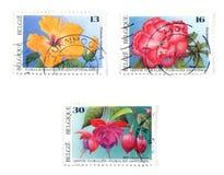 Selos de porte postal Collectible fotografia de stock