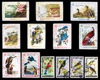 Selos de porte postal - pássaros Fotos de Stock Royalty Free