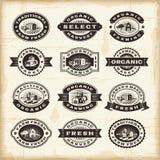 Selos do cultivo orgânico do vintage ajustados Fotografia de Stock