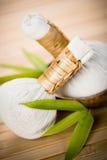 Selos e bambu imagem de stock royalty free