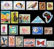 Selos exóticos Fotos de Stock