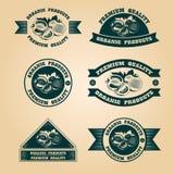 Selos orgânicos da colheita do vintage ajustados Imagem de Stock