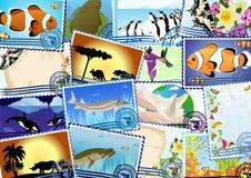 Selos postais Foto de Stock