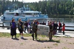 Selos rodeado liberados zoólogos de Ladoga após a reabilitação Imagem de Stock