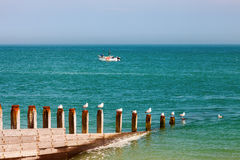 Selsey Bill West Sussex England Stock Photography
