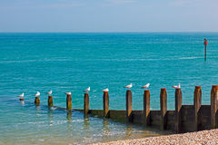 Selsey Bill West Sussex England Royalty Free Stock Image