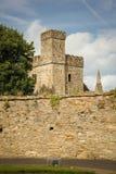 Selskar-Abtei Wexford-Stadt Co Wexford irland Stockfotografie
