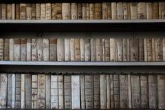 Seltene Bücher Lizenzfreie Stockbilder