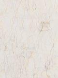 Seltene Vielzahl des weißen Marmors Stockbilder