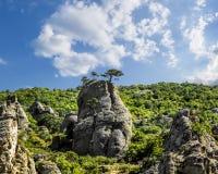Seltsame Felsformationen auf der Hochebene Demerdzhi in Krim stockfotos