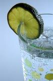 seltzer för limefrukt iii Arkivbild
