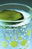 Seltzer IV de limette Photographie stock