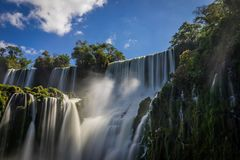 Selva Argentina Brasil das cachoeiras de Iguazu Fotos de Stock