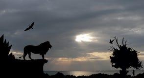 Selva com montanhas, a árvore velha, o leão dos pássaros e o meerkat no por do sol do mar com o céu nebuloso cinzento Fotos de Stock Royalty Free