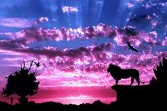 Selva com montanhas, a árvore velha, o leão dos pássaros e o meerkat no por do sol nebuloso roxo Fotografia de Stock