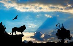 Selva con las montañas, el árbol viejo, el león de los pájaros y el meerkat en puesta del sol nublada azul Imágenes de archivo libres de regalías