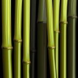 Selva de bambu abstrata do crescimento Foto de Stock