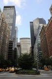 Selva de New York City Imagem de Stock