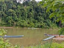 Selva del borrachín del río de Laos Nahm Khan Imagen de archivo