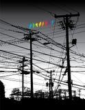 Selva e pássaros elétricos Fotografia de Stock Royalty Free