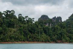 Selva luxúria dentro de Khao Sok National Park Fotografia de Stock Royalty Free