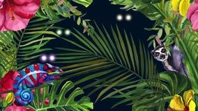 Selva Madagascar Noche en los ojos que destellan de la selva tropical