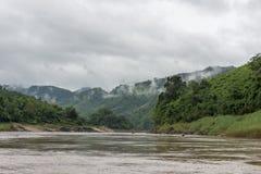 A selva no Mekong Laos imagens de stock