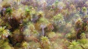 Selva profunda Imagen de archivo libre de regalías
