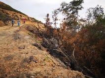 Selva quemada abajo y erosión de suelo después a partir de una estación seca de la monzón fotografía de archivo